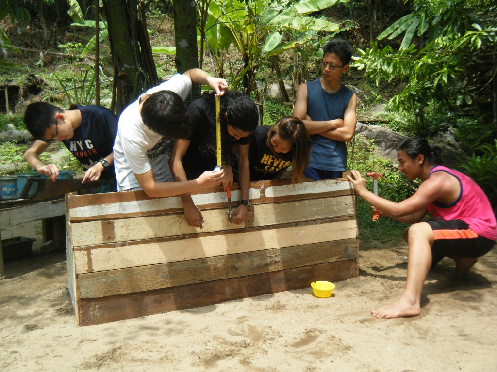 building one turtle nesting box